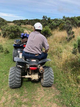 Wellington Adventures - Day Trip : Plenty of breaks to take pictures