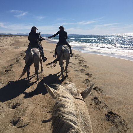 Monterey Bay Equestrian Center: Amazing day riding on the beach!