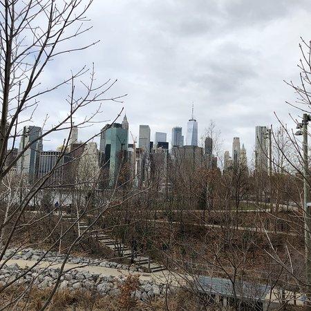 Brooklyn Bridge Park: photo1.jpg
