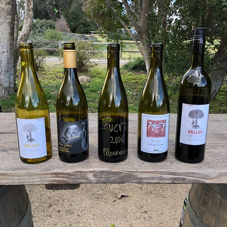 Santa Ynez, Califórnia: Some of the wines we tasted