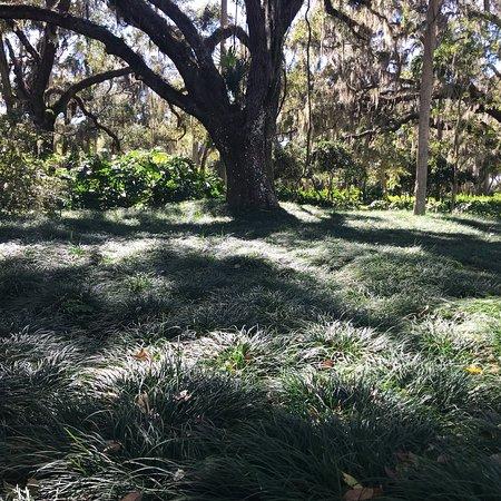 Palm Coast, FL: photo2.jpg