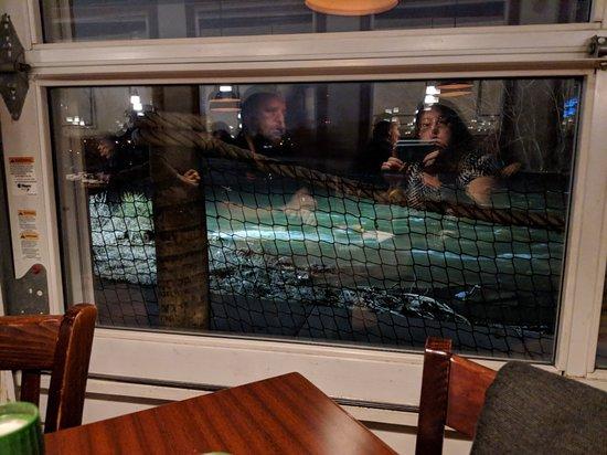 Riverfront Seafood Company: MVIMG_20180228_185855_large.jpg