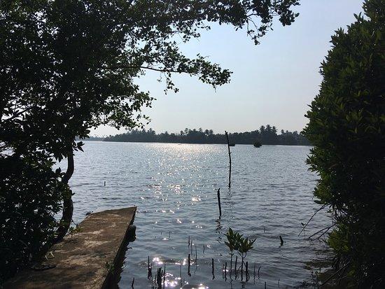 The Waterside Bentota: photo2.jpg