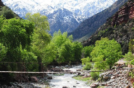 DAY TRIP TO OURIKA VALLEY FROM...