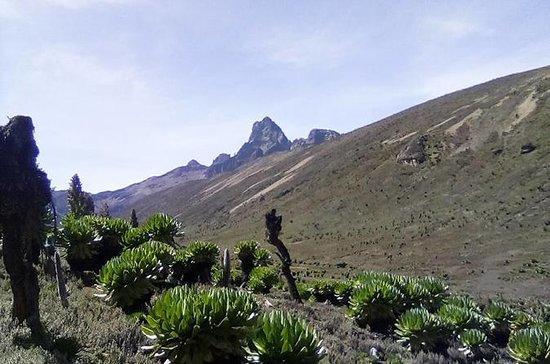 Mount Kenya Trekking Through...