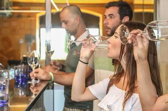 Wine tour with a Sommelier