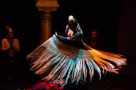 Flamenco Show at Museo del Baile...