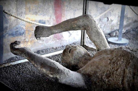 Pompeii Tour from...