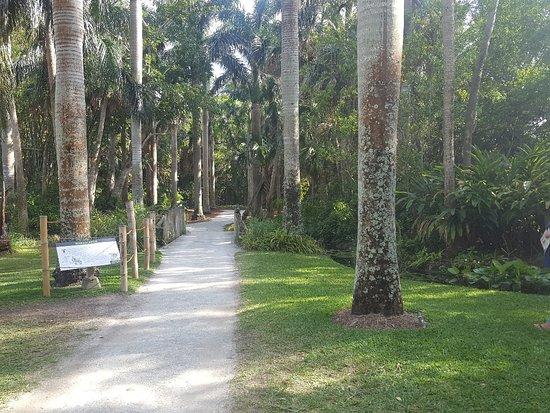 Mckee botanical garden picture of mckee botanical garden - Mckee botanical gardens vero beach ...