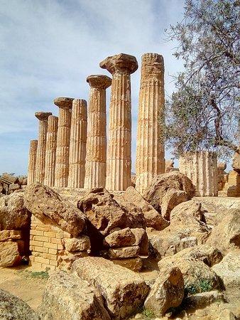 Tempio di Ercole : Herkulestempel 2