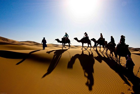 Finest Desert Tours
