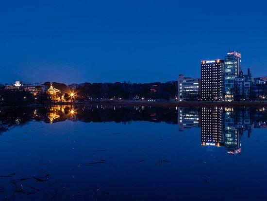 シングル/ダブル ルームの全景 - UenoAPA京成上野站前酒店的圖片 - Tripadvisor