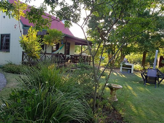 Forest Edge Nature-lovers' Retreat: Our cottage