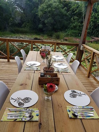 Forest Edge Nature-lovers' Retreat: Lily Pond Deck