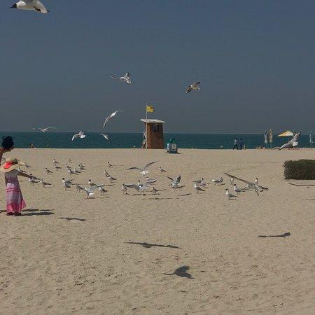 love visiting this beach each time i am in dubai love the ambience
