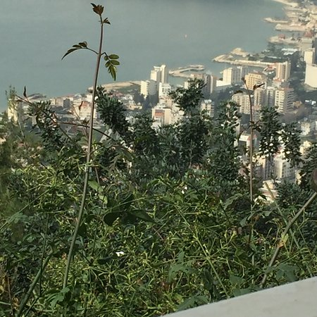 Harissa, Lebanon: photo1.jpg