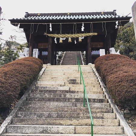Cycle Shikoku