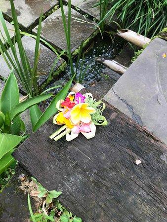Umajati Retreat: Beautiful offerings everywhere.
