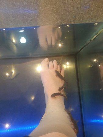 Doctor Fish Heraklion - Foot Spa Therapy: 20180308_160755_large.jpg