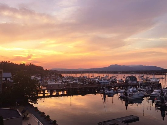Cowichan Bay, Канада: Just one of the views youll get to admire visiting us