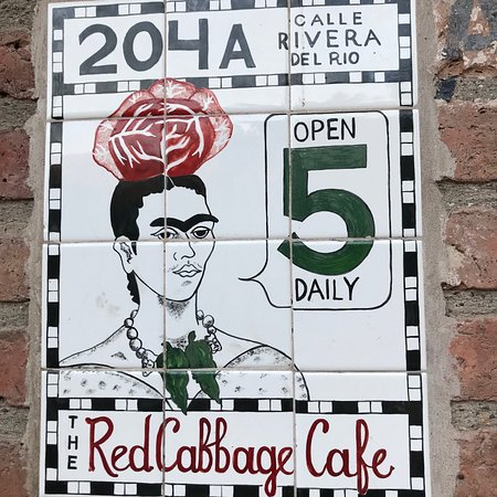 Red Cabbage Cafe Photo