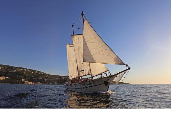 Eco boat Ganesh