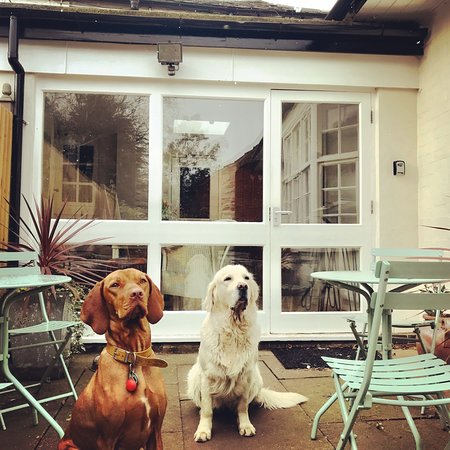 Woodhouse Eaves, UK: WE ARE DOG FRIENDLY! WE LOVE DOGS