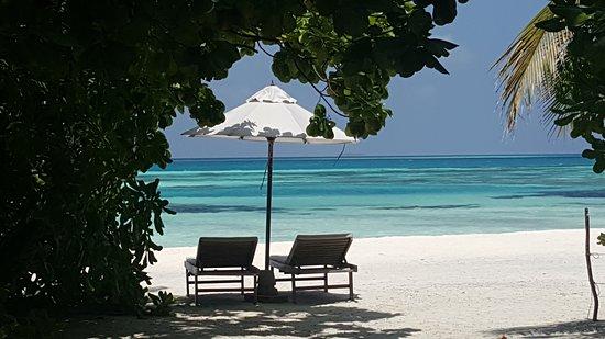 Dhidhoofinolhu Island Photo