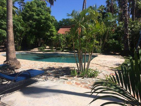 Hacienda Todos Los Santos: puedes tomar el sol, o descansar en su zona de sombra a 3 pasos de la alberca