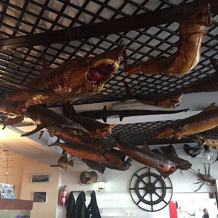 Best Restaurants In Jaffa Port