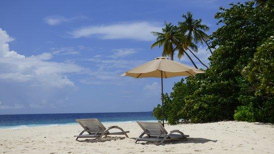 Rinbudhoo: Spiaggia bikini