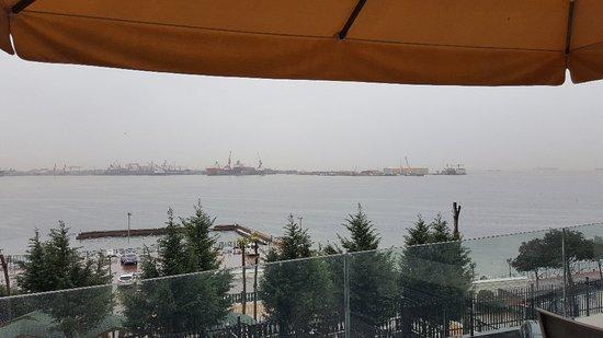 Guzelyali, Turkey: 20180308_104117_large.jpg