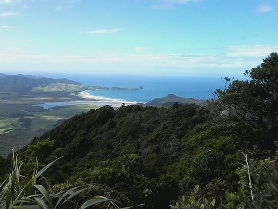 Great Barrier Island, Selandia Baru: View from Mt. Hobson lookout