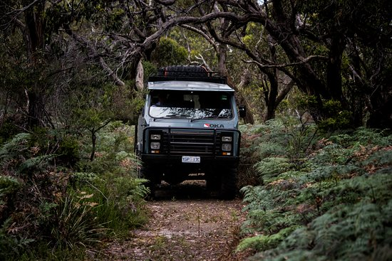 4WD through forests on French Island