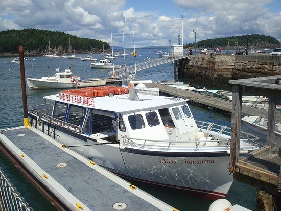 Bar Harbor Whale Watch Company: Miss Samantha, Baker Island Tour Boat