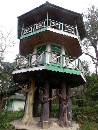Gorumara National Park, Indien: The Watch Tower