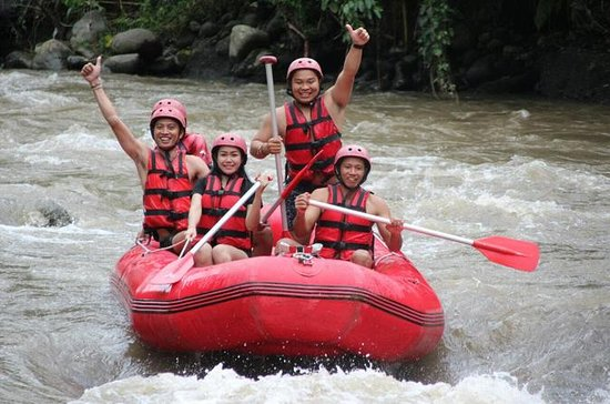 Half-Day White River Rafting from