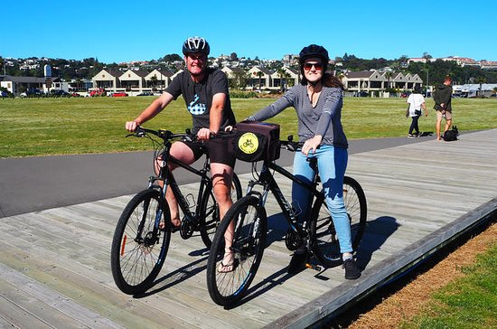 Napier Hybrid Bike Rental