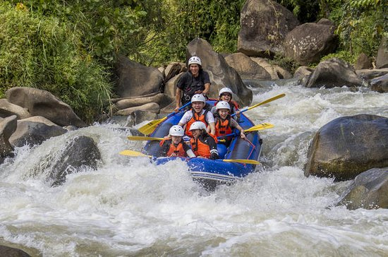 Whitewater Rafting and ATV Quad Bike Adventure in Chiang Mai