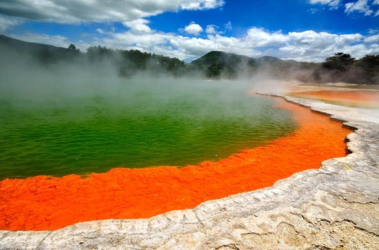 Wai-O-Tapu and Hobbiton Movie Set Tour including Lady Knox Geyser...