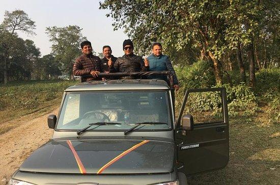 Wildlife Adventure i Chitwan Nepal