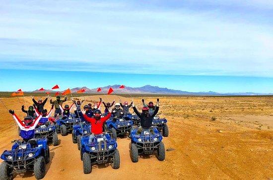 Half-Day Mojave Desert ATV Tour from ...