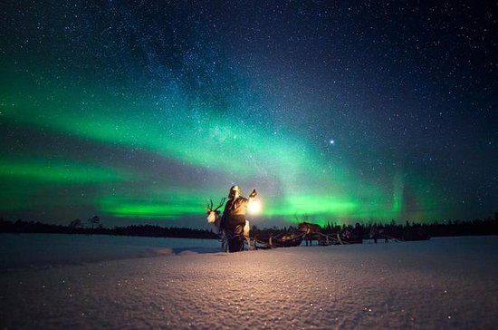 Le Marin, Martinik: Reindeer Sami experience and Northern Lights
