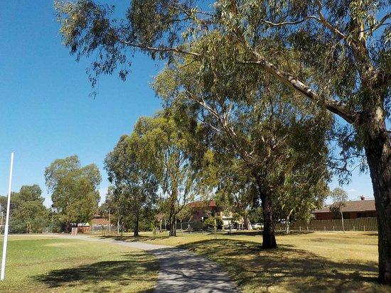 Allard Park