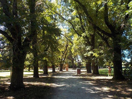 Methven Park