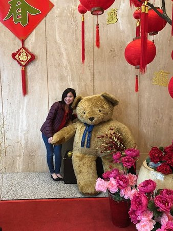 Bear in Building Lobby