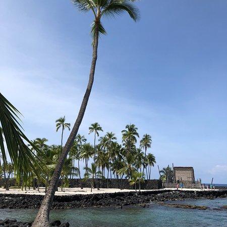 Honaunau, Hawái: photo2.jpg