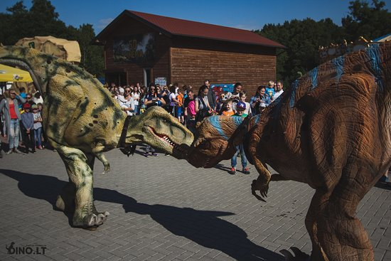 Klaipeda, Lithuania: An astonishing battle between our dinosaurs, come and see it alive!