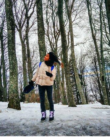 Medvednica mountain (Sljeme): IMG_20180309_103111_large.jpg