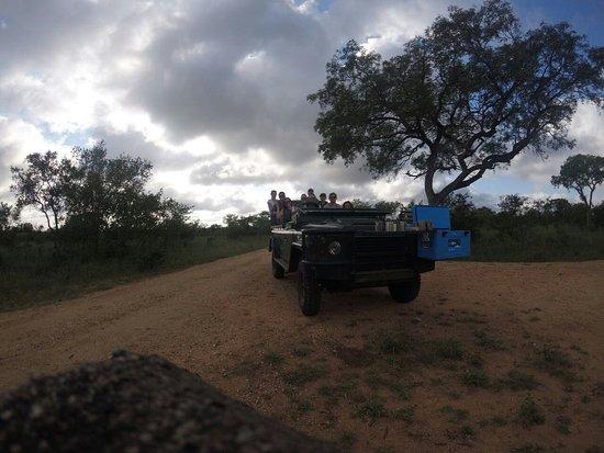 Manyeleti Game Reserve, South Africa: IMG-20180308-WA0009_large.jpg